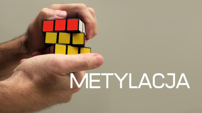 Metylacja, to nie takie proste, jak myślisz…